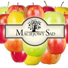 Maciejowy Sad